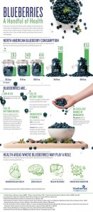 blueberry-infographic-a-handful-of-health
